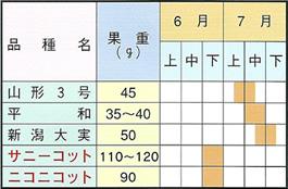 あんず苗木 取り扱い品種および収穫期一覧表