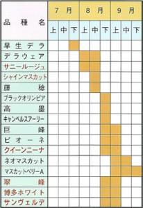 ぶどう苗木 取り扱い品種および収穫期一覧表