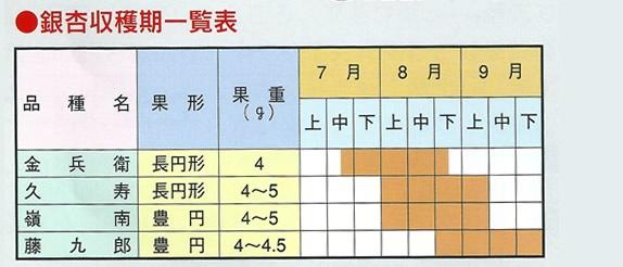 銀杏収穫期一覧表