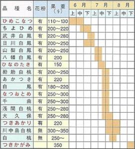 桃苗木 取り扱い品種および収穫期一覧表