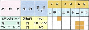 ネクタリン収穫期一覧表