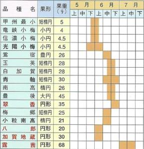 梅苗木 取り扱い品種および収穫期一覧表
